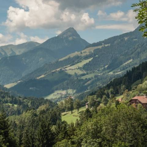 Stockenboi in der Naturarena Kärnten