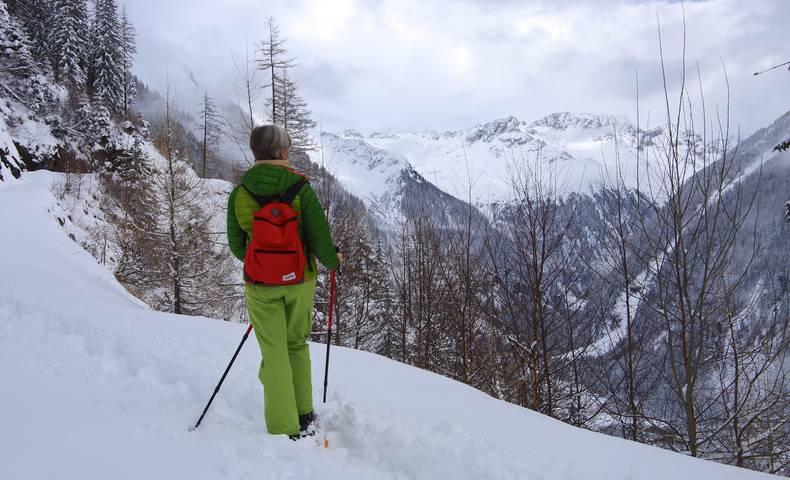 Schneeschuhwandern im Seebachtal