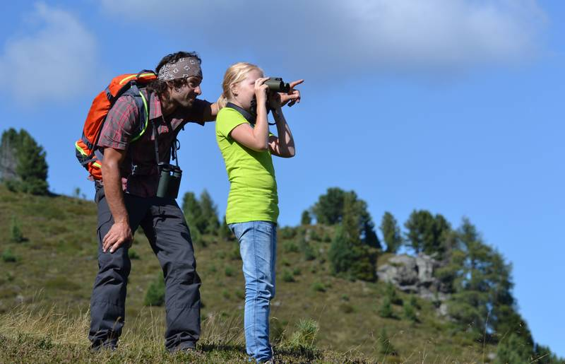 Wildtierbeobachtung im Biosphärenpark Nockberge