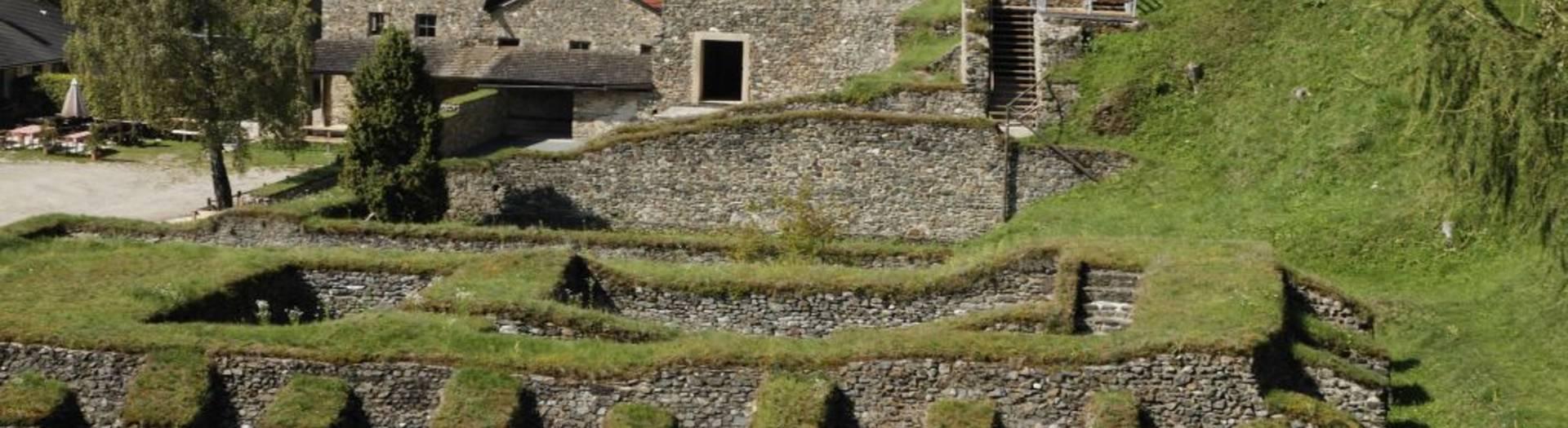 Ausgrabungen am Magdalensberg