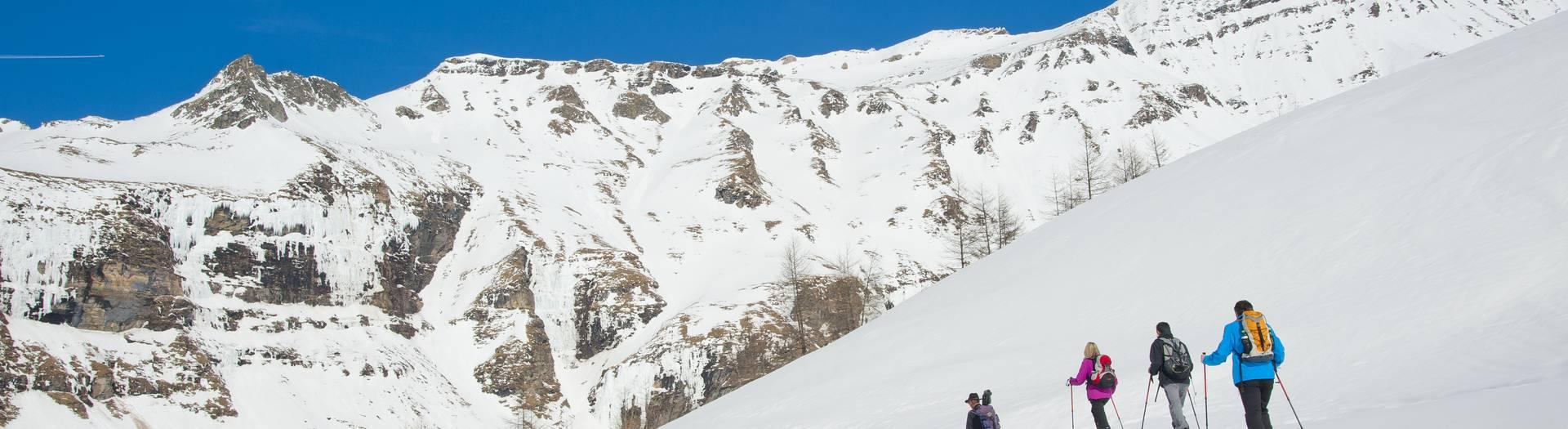 Schneeschuhwanderung Wildtierbeobachtung Hohe Tauern