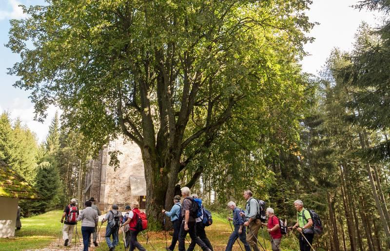 Pilgern in Kärnten, Saualpe, Günter Jagoutz