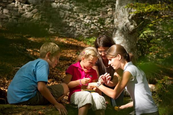 <p>Magische Momente Sommer, Geopark Karnische Alpen</p>