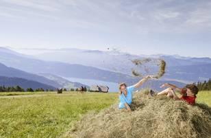 Geschmack der Kindheit - Wandern Millstätter Alpe quer