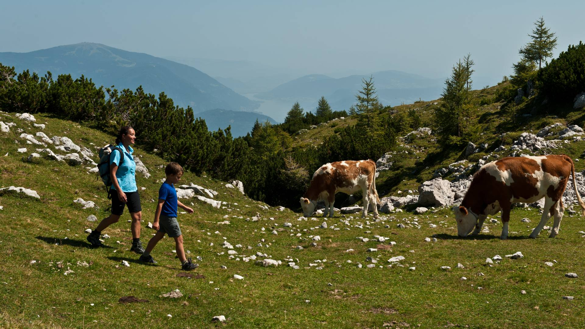 <p>Wandern am Dobratsch</p>