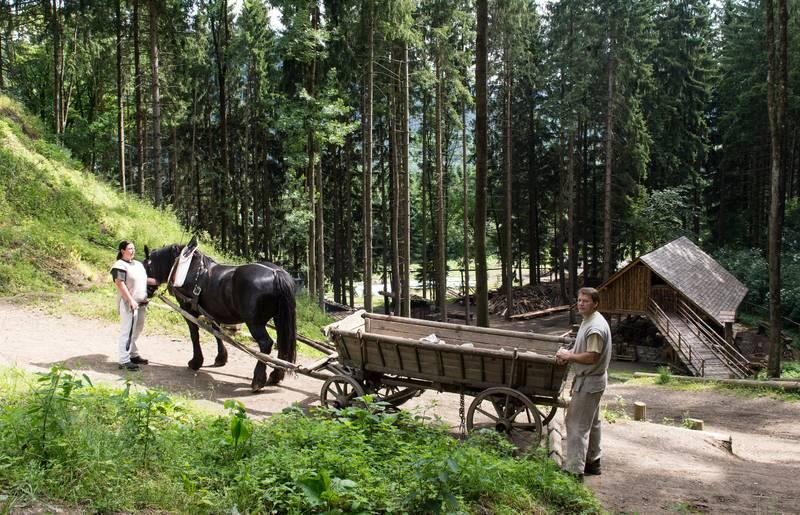 <p>Burgen und Schlösser in Kärnten, Burgbau Friesach Fuhrwerk</p>
