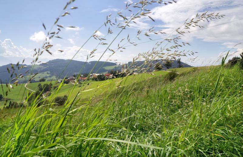 <p>Pilgern in Kärnten, Diex</p>