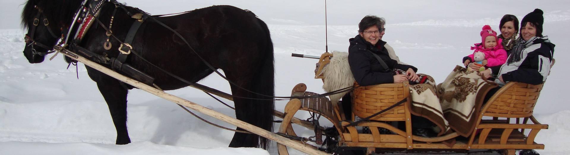 Pferdeschlittenfahrt im Schnee im Bodental