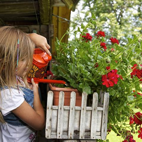 Kind beim Blumengießen