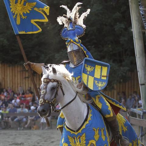 Ritterspiele Burg Sommeregg