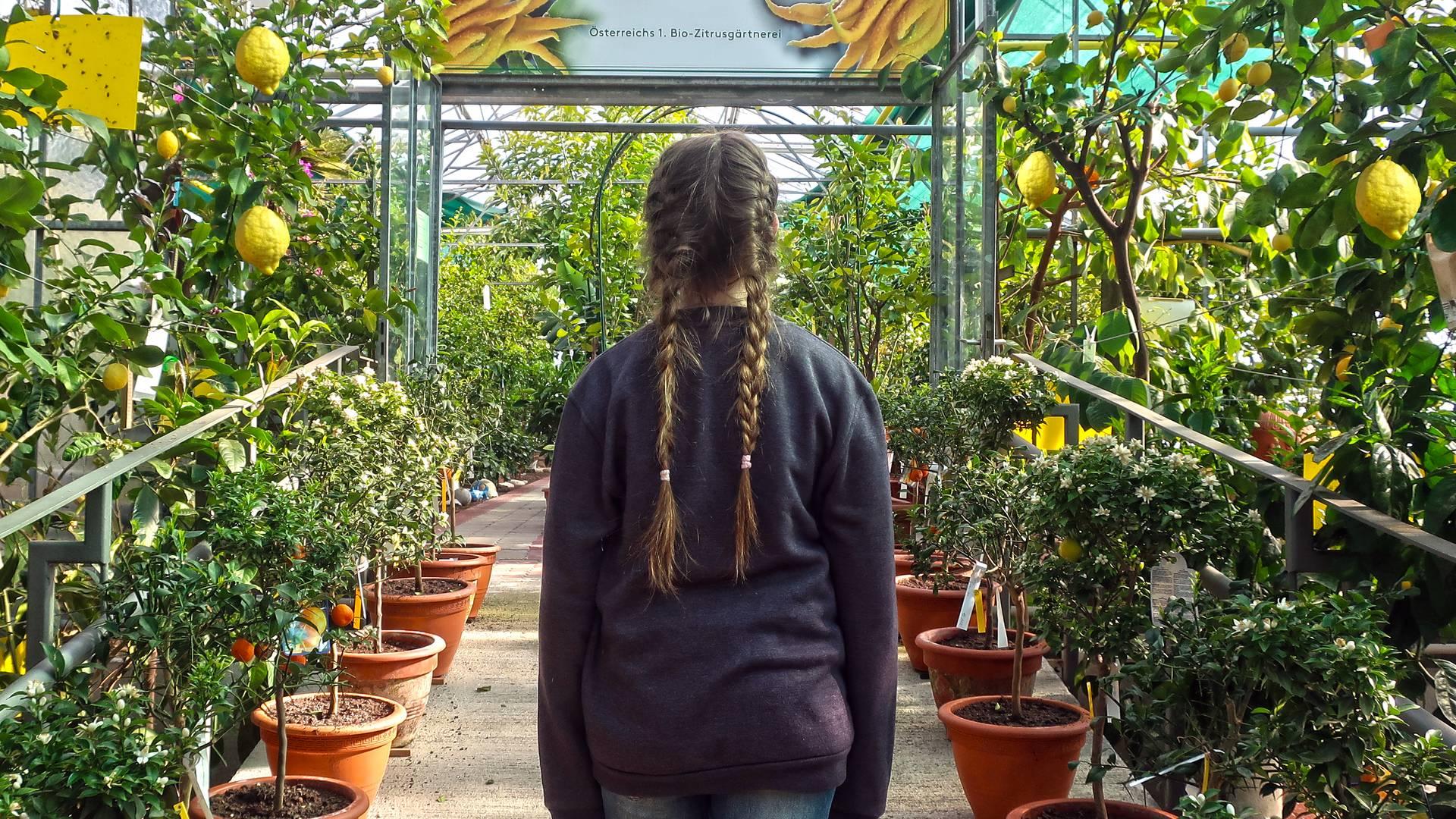 Jasmin Kreulitsch_Zitrusgarten