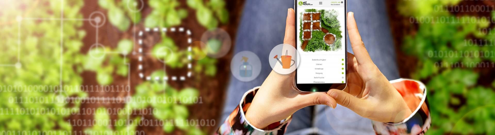 myAcker.com Smartphone