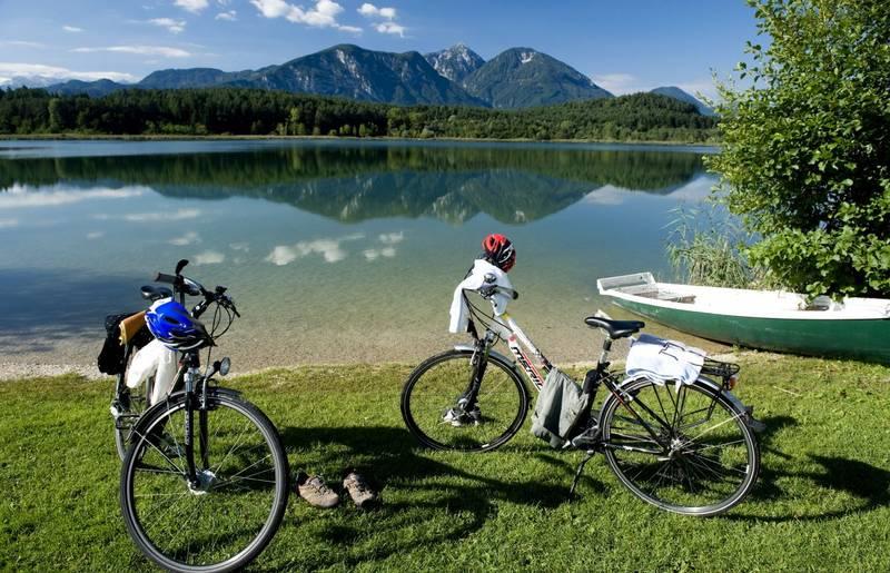Mit dem Hund gemeinsam in den Urlaub und eine Radreise unternehmen