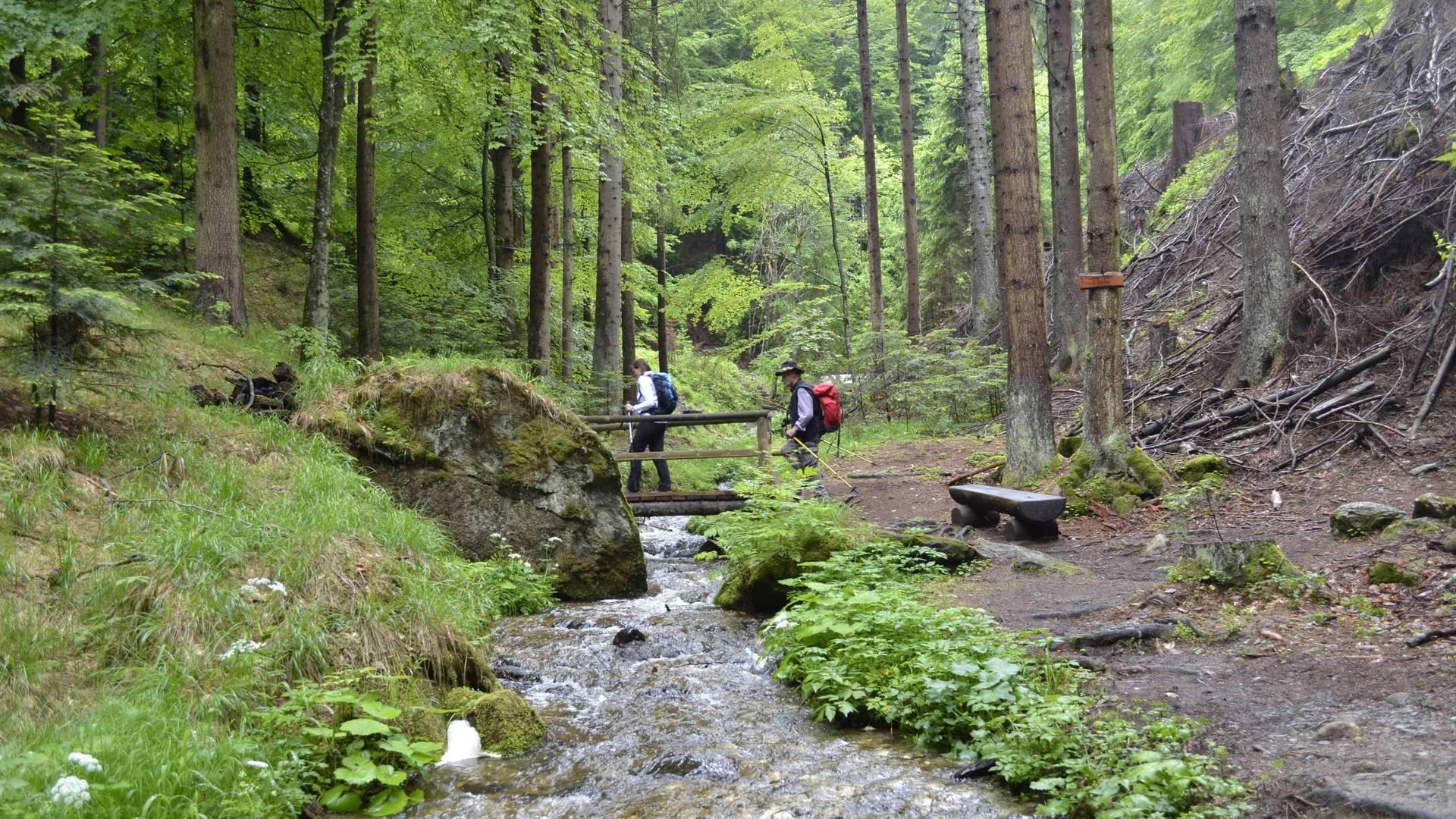 AAT Ossiacher Schluchtweg 0321