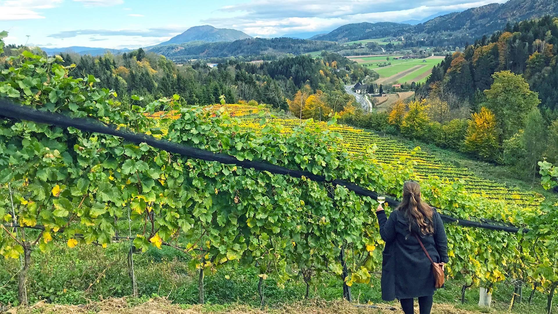 Jasmin Kreulitsch Weintour durch Kaernten