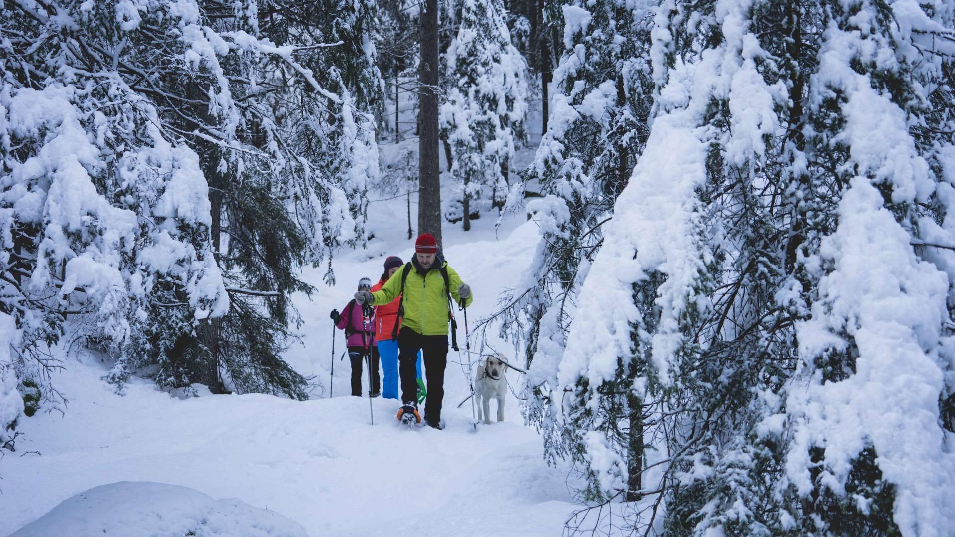 Nationalpark Lodge Grossglockner Wildnis
