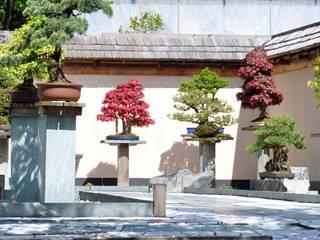 Bonsai Museum   geöffnet bis Anfang November