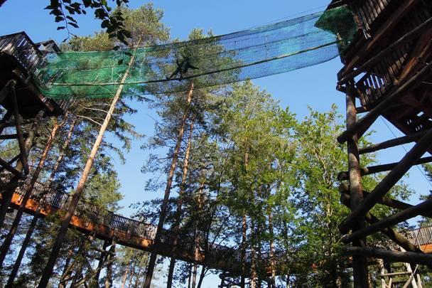 Kaernten AT Ausflugsziele Walderlebniswelt Baumwipfelweg 002