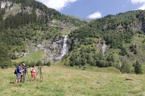 Natur genießen im Seebachtal