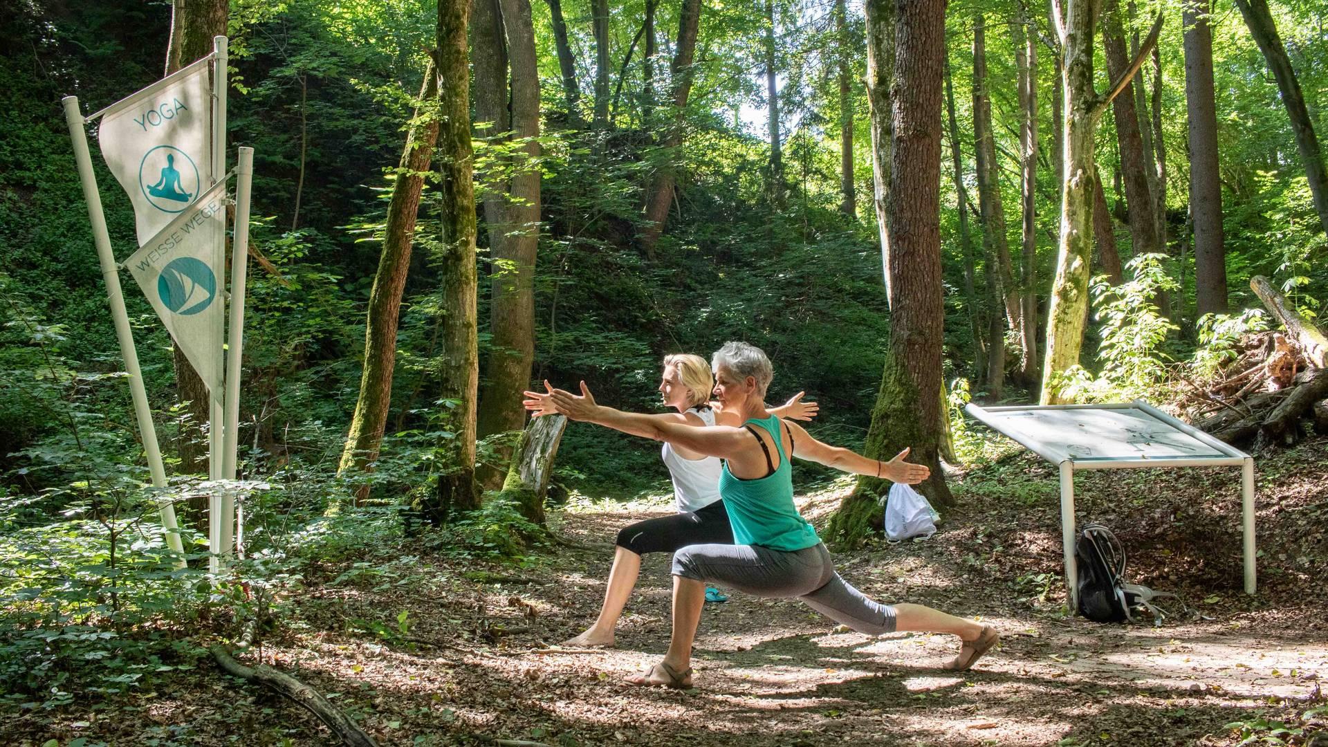 Yoga am Yogaweg mit PASSENGER X Nicole Bittger