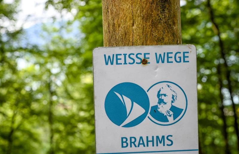 Brahms Weg c Mirco Taliercio
